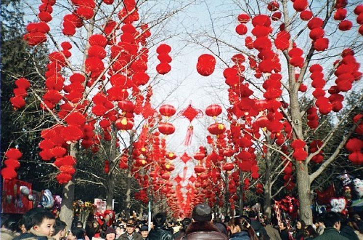 Red-lanterns-trees-Lunar-New-Year-Beijing